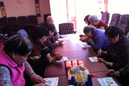 BHSCT Elders Project